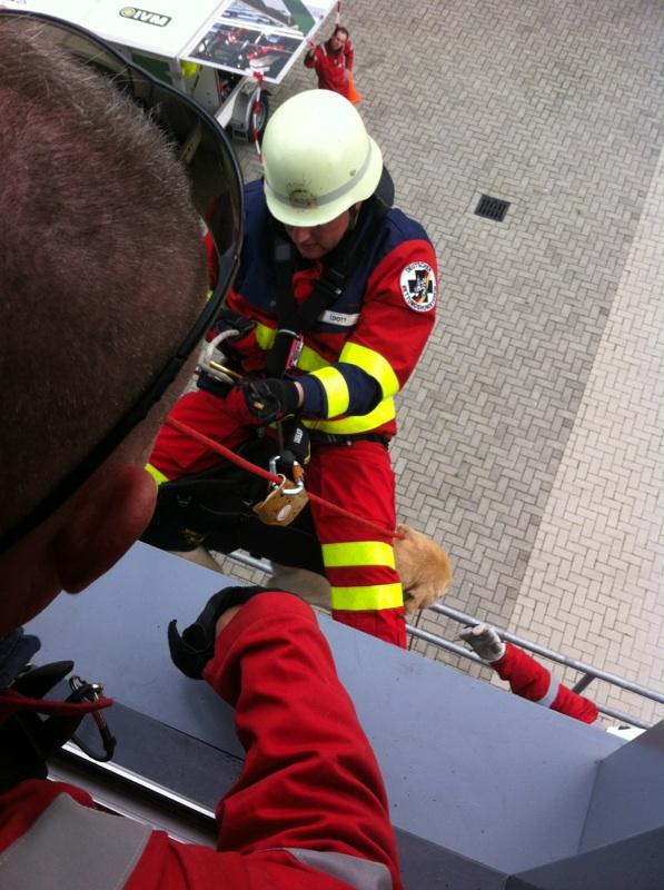 Thorsten met hond Baily van Rettungshundestaffel Ems-Jade bij het abseilen (brandweerkazerne Stadskanaal).